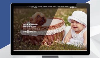 安美宝宝品牌网站案例