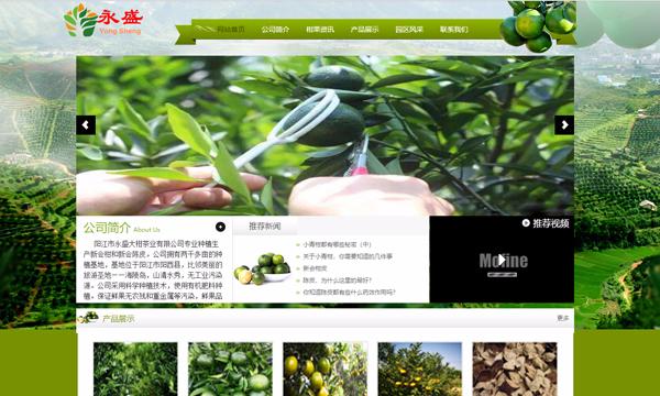 阳江市永盛大柑茶业有限公司